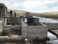 Image for Swincombe Dam fish ladder