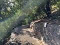 Image for L'escalier et Le jardin Romieu - Bastia - France