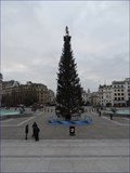 Image for Trafalgar Square Christmas Tree - Trafalgar Square, London, UK