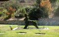 Image for Carousel Topiary - Rose Hills Memorial Park - Whittier, CA