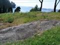 Image for Petroglifos de Mogor