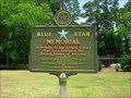 Image for Blue Star Marker at National Peanut Museum-Tifton GA.-Tift County