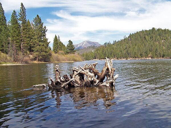 Hume lake california fishing holes on for Canyon lake fishing ca