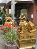 Image for Chinese Lions, Lage
