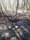 Image for Ebenezer Swamp Ecological Preserve Dragonfly - Montevallo, Alabama