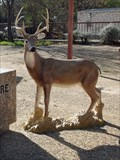 Image for Realistic Whitetail Deer - Llano, TX