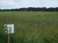 Image for Bloemrijk Akker in Ter Horst  (Beilen) NL
