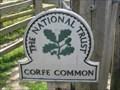 Image for Corfe Common - Corfe Castle, Isle of Purbeck, Dorset