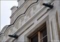 Image for Renaissance gargoyles at house N° 522 / Renezancní chrlice na domu c. 522 (Horní Square in Slavonice, South Bohemia)