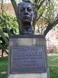 Image for František Bakule - Družec, Czechia