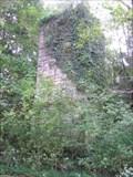 Image for Bear Springs