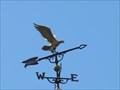 Image for Devane Park Weathervane - Lake Placid, FL
