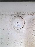 Image for US Geological Survey Marker 331 Old Wailuku Courthouse Maui