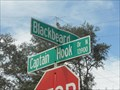 Image for Blackbeard & Captain Cook - Jacksonville, FL