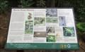 Image for Manoa Valley Wildlife - Honolulu, Oahu, HI