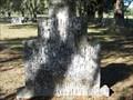 Image for Solon and Stella Platt-Pine Level, FL