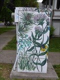 Image for Native Plants of New York - Ithaca, NY