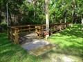 Image for Highlands Hammock Memorial Boardwalk - Sebring, Florida, USA