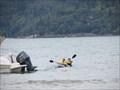 Image for Kayaking Praia Enseada - Ubatuba, Brazil