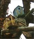 Image for Birdhouse Tree - Carrollton, GA