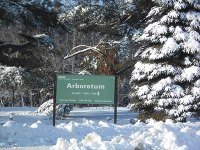 Arboratum