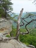 Image for Stone Door Overlook