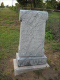 Image for Herl C. Williams - Bright Prospect Cemetery - Miner, Mo.