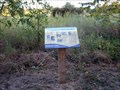 Image for Seed Dispersal - Boundary Creek Natural Resource Area - Moorestown, NJ