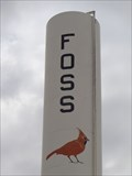 Image for Foss Water Tower - Oklahoma, USA.