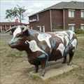 Image for Lily Cow - Plainview, TX