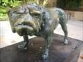 Image for Uga (mascot)