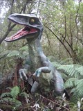 Image for Prehistoric Path, Otway Fly - Otway Ranges, Victoria