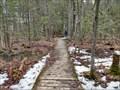 Image for Bell High Boardwalk in Stoney Swamp - Ottawa, Ontario, Canada