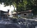Image for Homem vive sozinho há 32 anos em ilha deserta de São Sebastião, SP