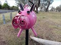 Image for Miss Piggy - Biddleston, Qld