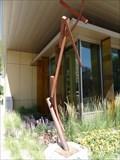 Image for Procyon - Denver, CO, USA