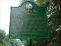 Image for Battle of Amelia