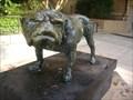 Image for Bulldog - Athens, GA
