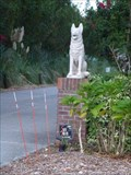 Image for ICNDF Dogs - St. Augustine, FL