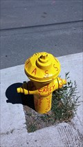 Image for Surprise Valley HS Class of 2013 Fire Hydrant - Cedarville, CA