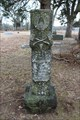 Image for William M. Lick - Allens Point Cemetery - Allens Point, TX