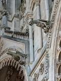 Image for Gargouilles de la Cathédrale Notre-Dame  (Amiens, Hauts-de-France, France)