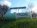 Image for Prozac Capsule - Red Hook, NY