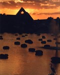 Image for Sun Sets On Epcot - Orlando, FL
