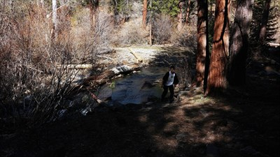 Access point to the cabin is through Little Shasta River.
