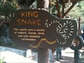 Image for King Snake - Anaheim, CA