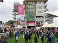 Image for York Racecourse - Knavesmire, York, England.
