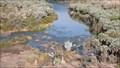 Image for Epupa-Falls Overlook,  Kaokoland, Kunene Region, Namibia