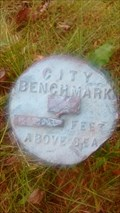 Image for North Street City Bench Mark Elev 792.981 - Sparta, WI