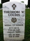Image for Theodore W. Goldin-King, WI